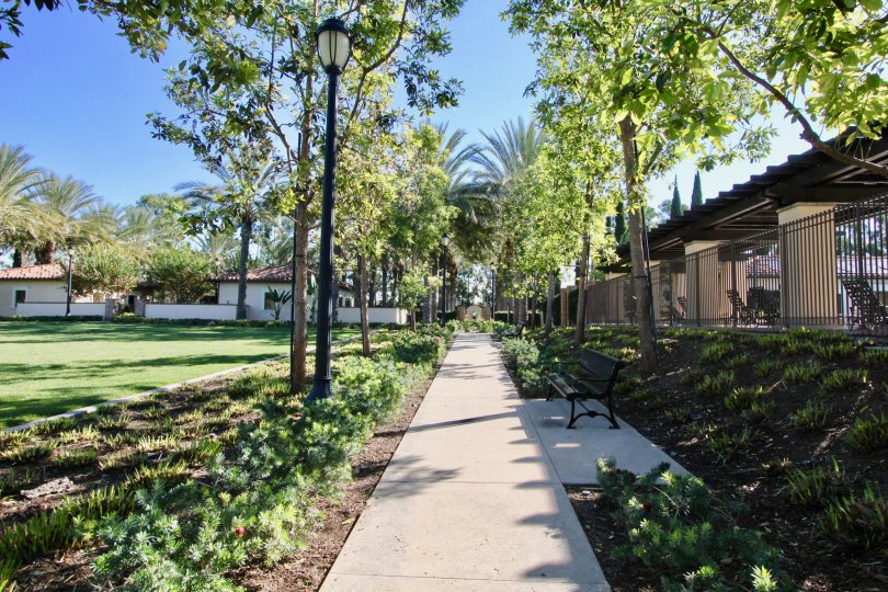 Coronado Building having attractive green park location at Irvine City