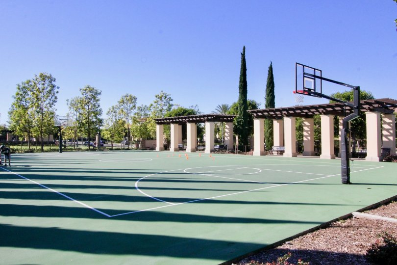 A sunny day in Coronado with a basketball court and trees surrounding it