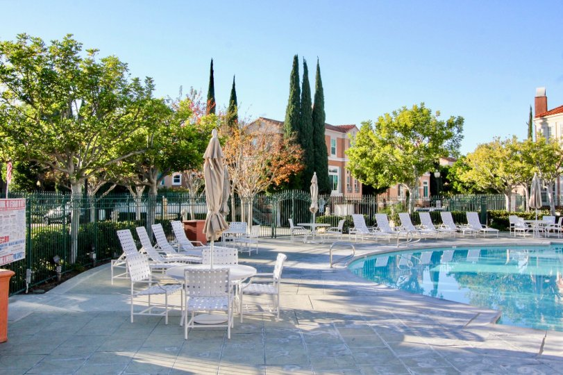 THE BEAUTIFUL SWIMMINGPOOL WITH LOT OF CHAIRS, SHOWS LOT OF TREES WHICH IS LOCATED IN THE CITY OF IRVINE