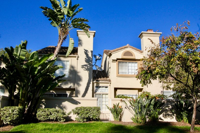 Vibrant landscaping with mature palm groves, intimate courtyards, and resort-style pools is the hallmark of Las Palmas Apartment Homes in Irvine. Choose from several floor plans to reflect your own personal style and indulge in amenities such as a gated e