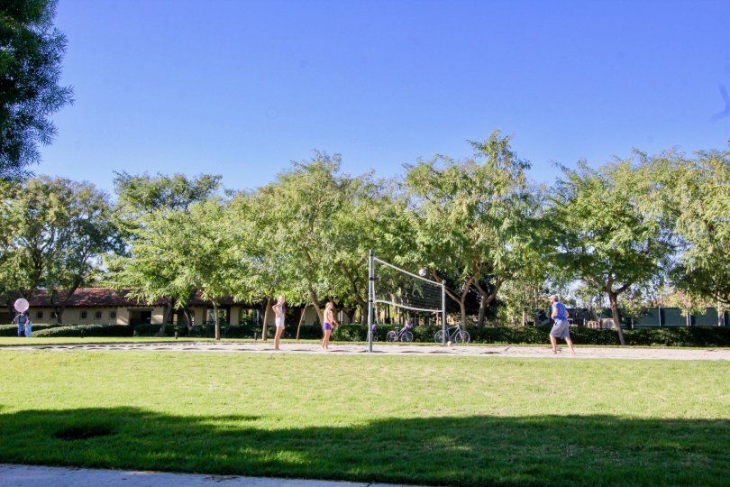 Few Peoples are playing Throw ball in garden of Montilla