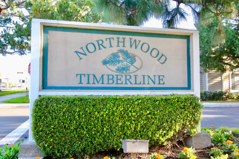 THE FLAT IN THE Northwood Timberline WITH THE NORTH WOOD Northwood Timberline WALL, PLANTS, TREES