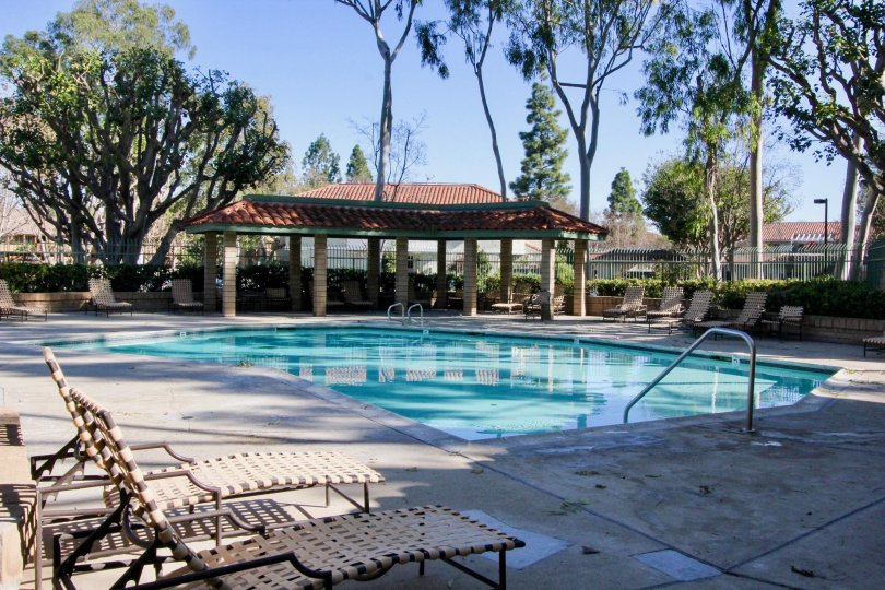 A sunny day at the pool in the community of Orangetree Terrace In the city of Irvine California