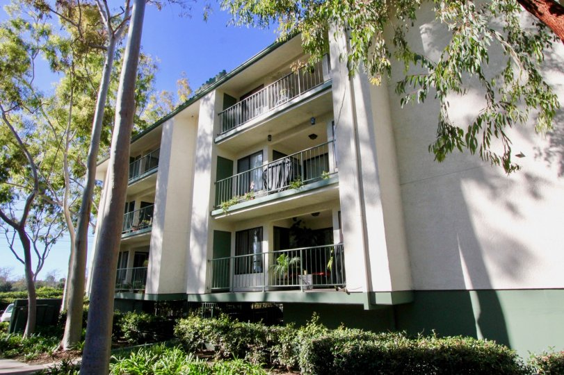 Orangetree Terrace is a great community to live in, which is located in Irvine, California.