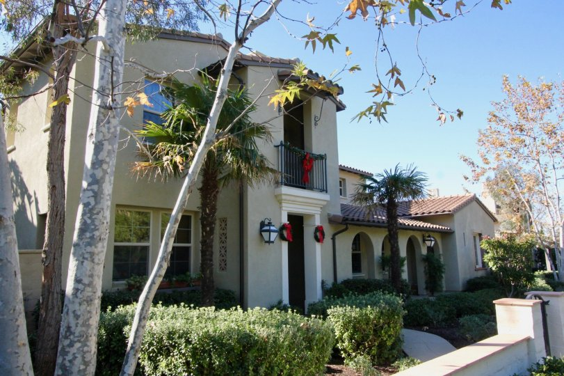 A sunny day with a large house in Paloma, that has dark doors and palm trees next to it.