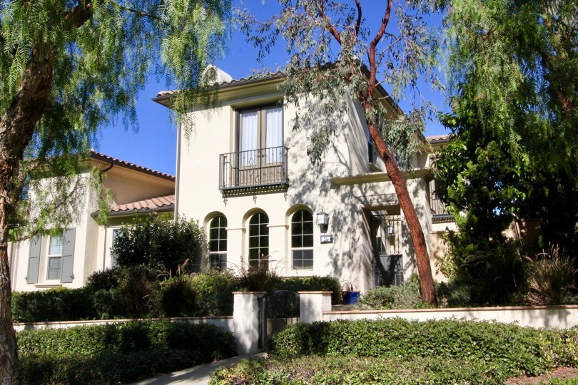 A sunny day in Paloma with a large house with big windows, surrounded by tall trees
