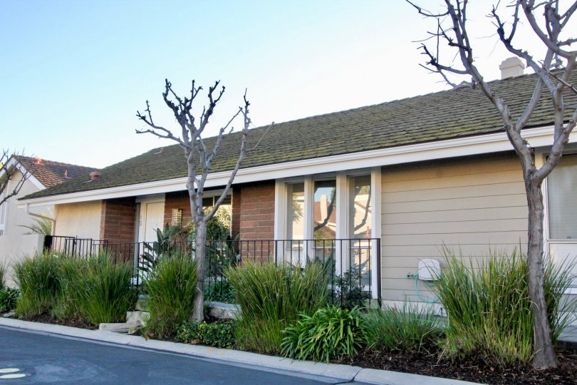 view of front of house with plants and bare trees in Park Homes community in Irvine, California