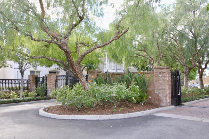 Parklane is a gated Community for a great and safe family life in Irvine, California.