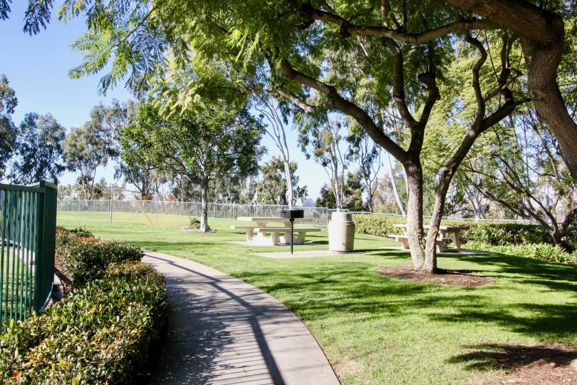 The beautiful moments of my life never before in Irvine California with a good infrastructure