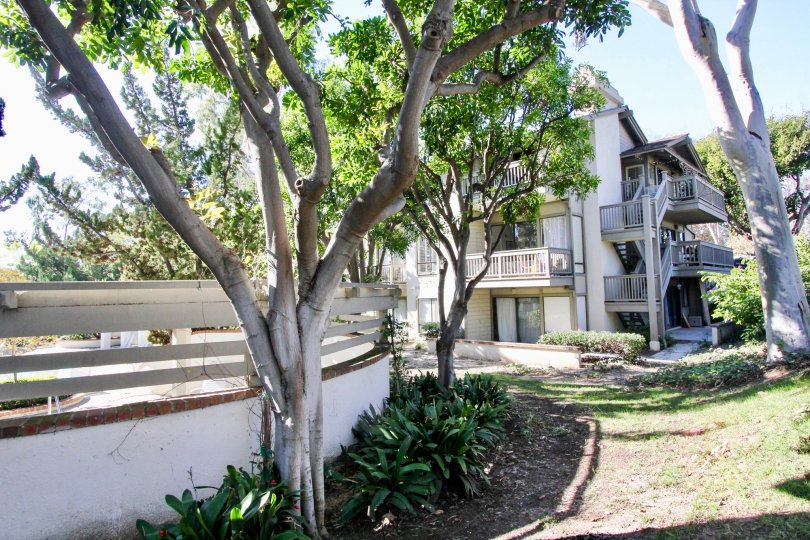 A well maintained large lawn complete with a pool and hottub, pretty trees, 3 apartments in each unit, lots of natural light, in Rancho San Joaquin Townhomes, Irvine, California