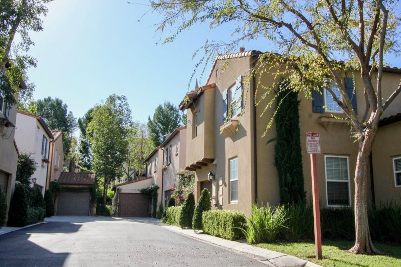 Road in Sage has few Villas with tall trees, meadows and cutted bushes