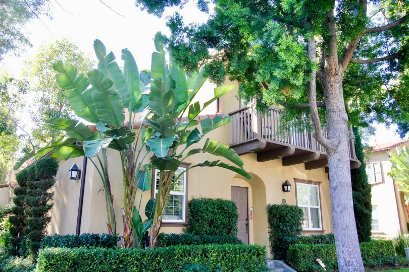 a beautiful home with plenty of trees in sage, irvine city california