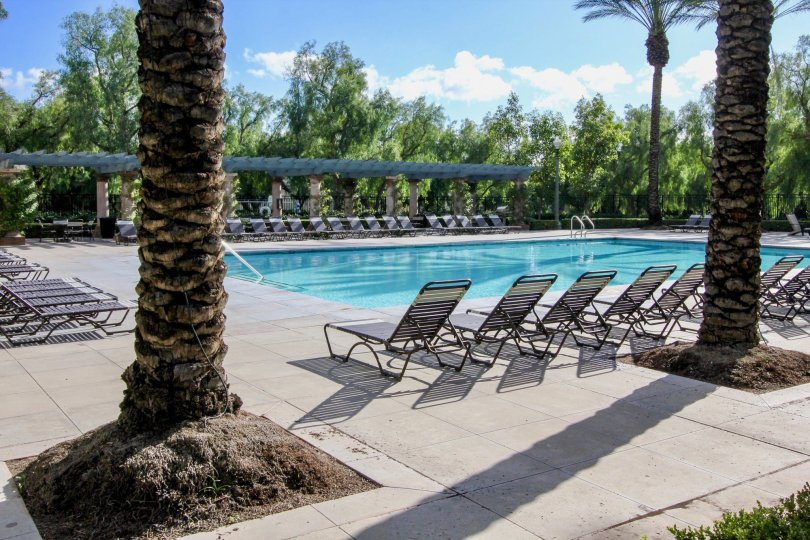 A view of the pool and lounge chairs and trees in the San Simeon community in Irvine, CA