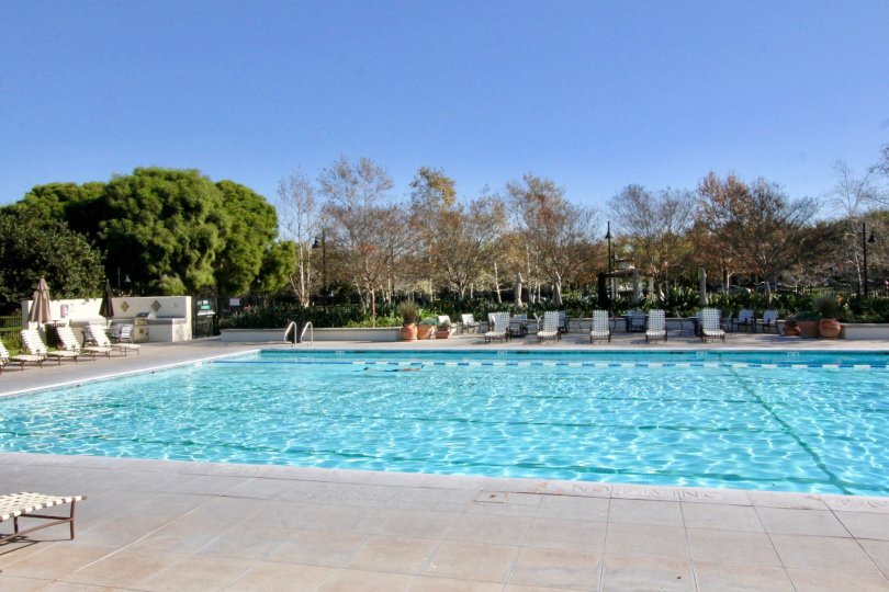 Fabulous big swimming pool with sitting and trees around in Sandalwood of Irvine