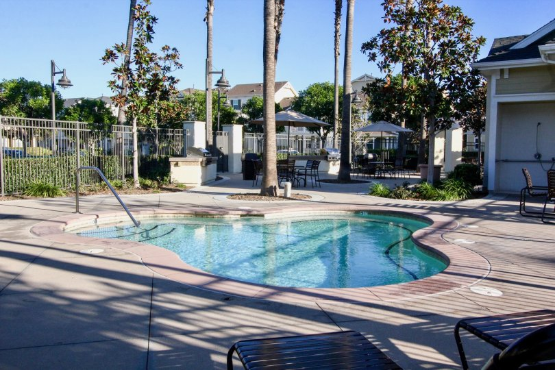 Marvellous Swimming pool with sitting and palm trees near villas of Savannah in Irvine