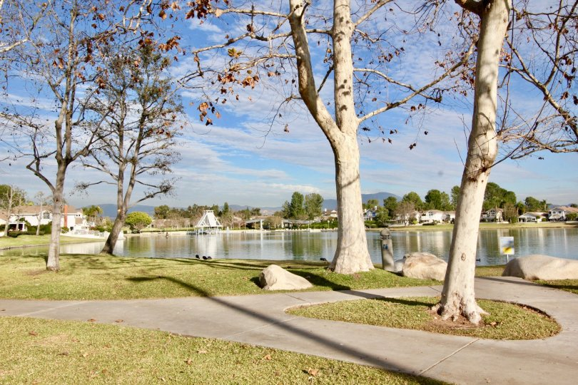 Seaport community paths on a bright day overlooking pond and trees in Irvine CA
