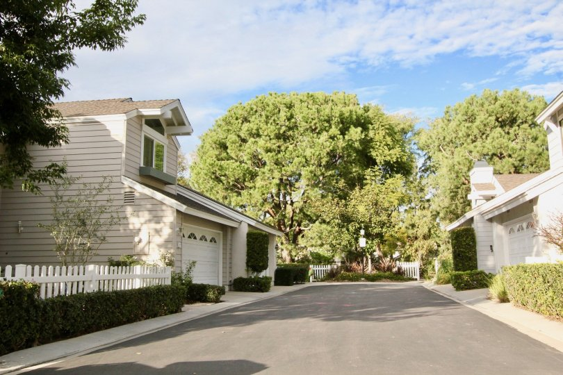 A driveway in the middle of residence in the Seasons community.