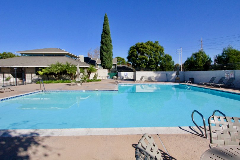 A sunny day in the area of Smoketree, outside, pool, trees, fence, ladder, chairs, condo`