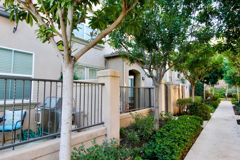 A row of back patios and trees at Tamarisk community in Irvine