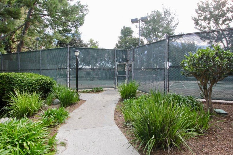 Two beautiful Tennis court in the The Lakes with some trees, shrubs and foot path.