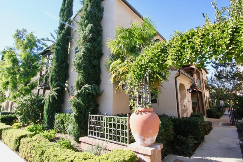 A corner view of a residence in Vientos community covered in tall shrubs.