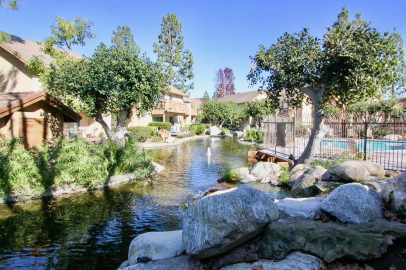 A sunny view of the creek between apartments and swimming pool at Villas community in Irvine California