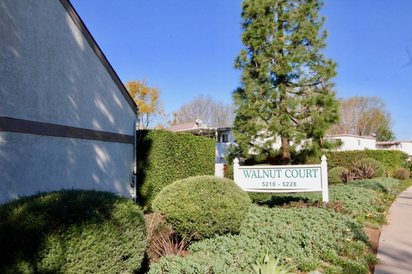 The Walnut Court sign and side of housing development