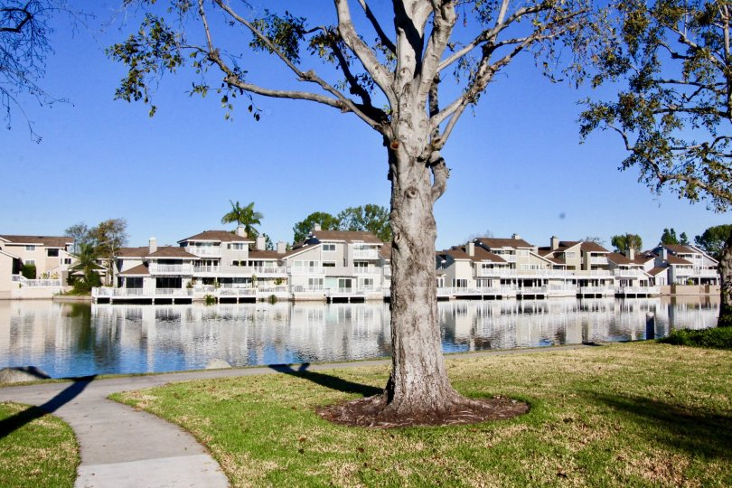 BEAUTIFUL APPARTMENTS ARE THERE WITH INFRONT OF RIVER IN THE WOODBRIDGE GROVE