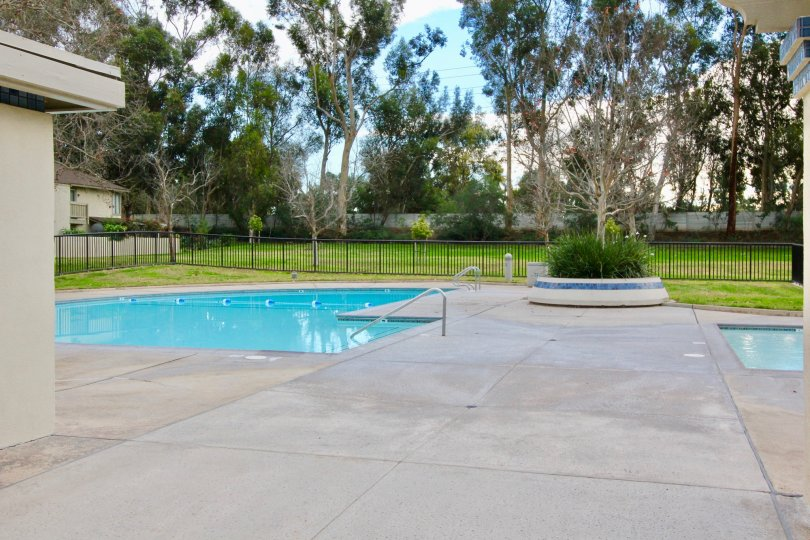A beautiful swimming pool in the Woodbridge Reserve with some trees and lawn.
