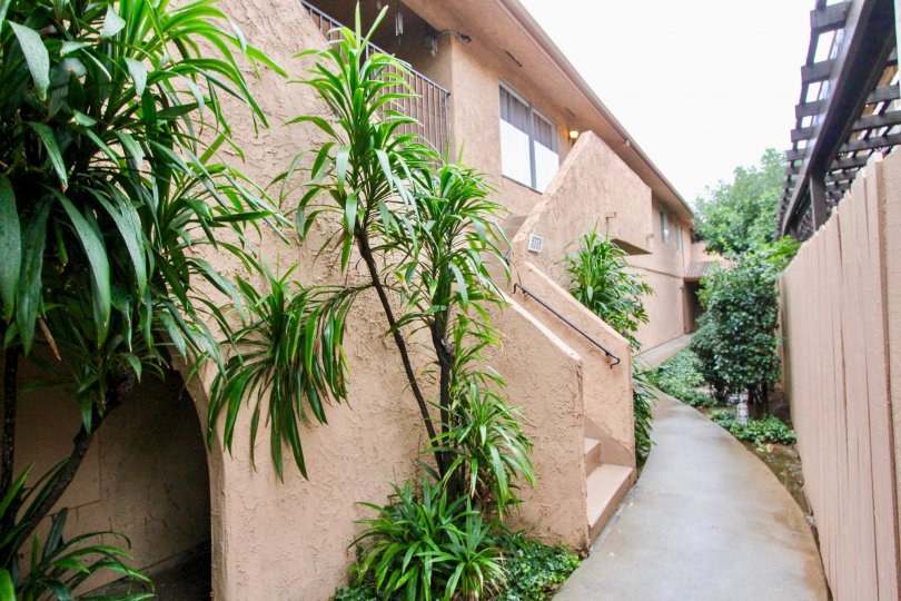 THIS IMAGE SHOWS THE PATHWAY TO THE HOME IN LA HABRA THAT SHOWS LOT OF PLANTS