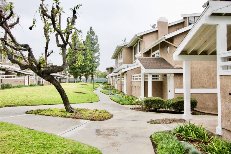 There are some apartments in Coyote Creek with lawn.
