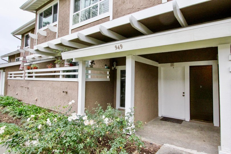 THE 949 APARTMENT IN THE COYOTE CREEK WITH THE FLOWER PLANTS, FLOWER POTS