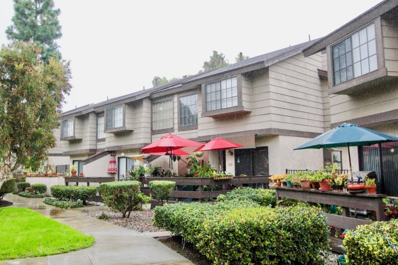 THE BUILDING IN THE LA HABRA WOODS TOWNHOMES WITH THE UMBRELLAS, FLOWER POTS, LAWN