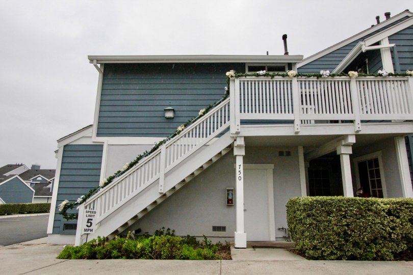 THE 750 APARTMENT IN THE STONE HARBOR WITH THE UPSTAIRS, PLANTS