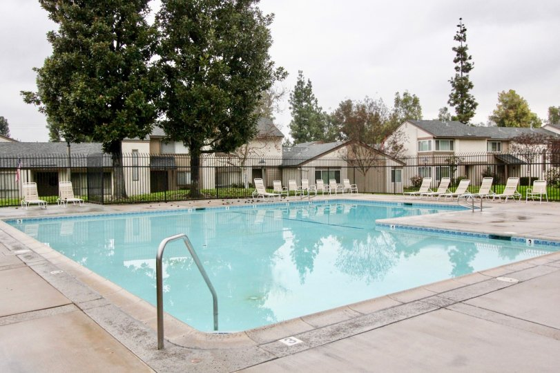 THE SWIMMING POOL WITH LOT OF CHAIRS, SURROUNDED BY PLANTS AND TREES IN LA HABRA CITY