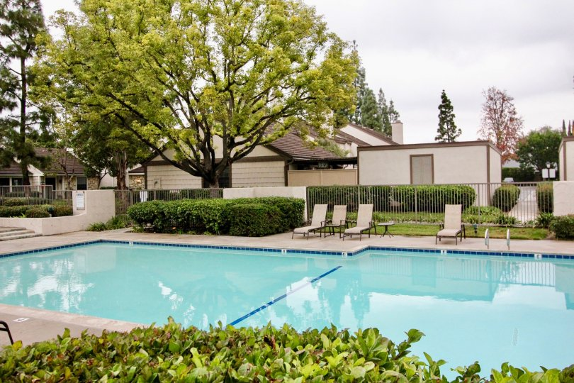 Swimming pool is in The Gables with seating chairs, trees and cutted bushes