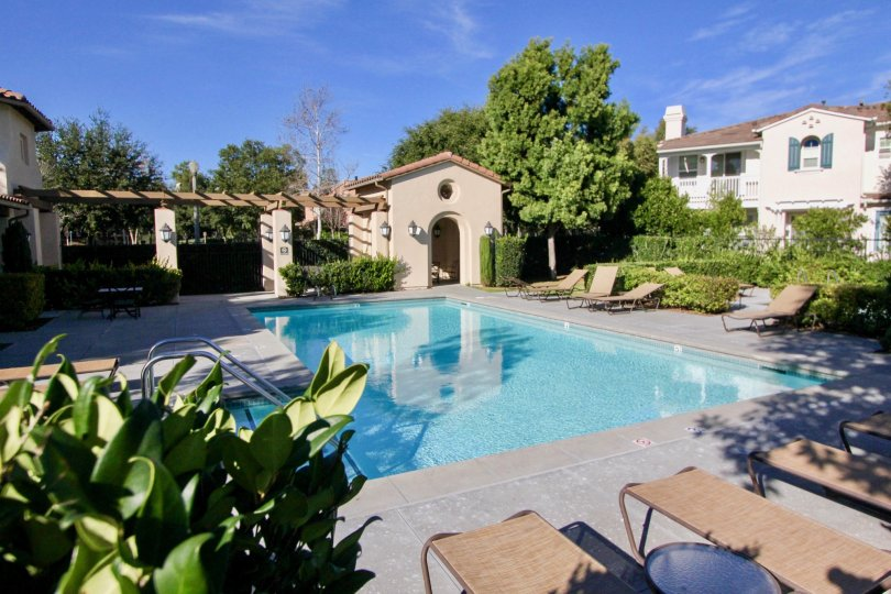 A sunny day by the pool at a Atherton Glenn home in Ladera Ranch