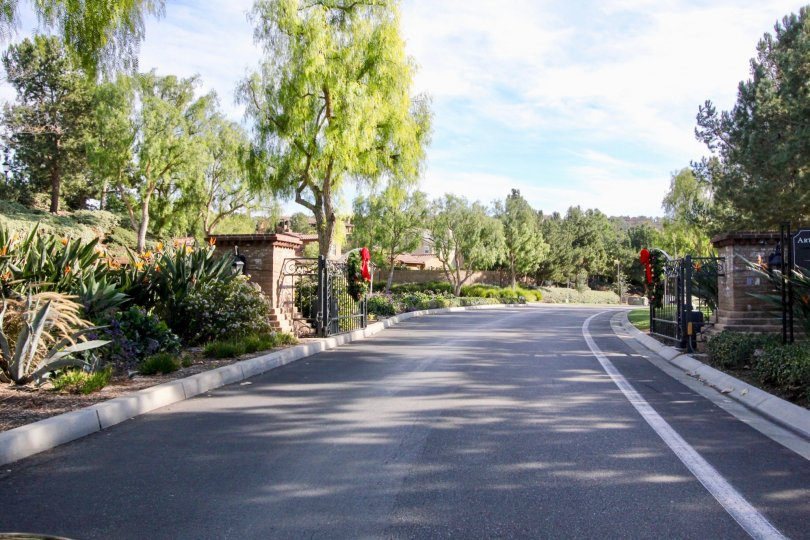 Nice approach road with greenary and trees around in Castellina of Ladera Ranch
