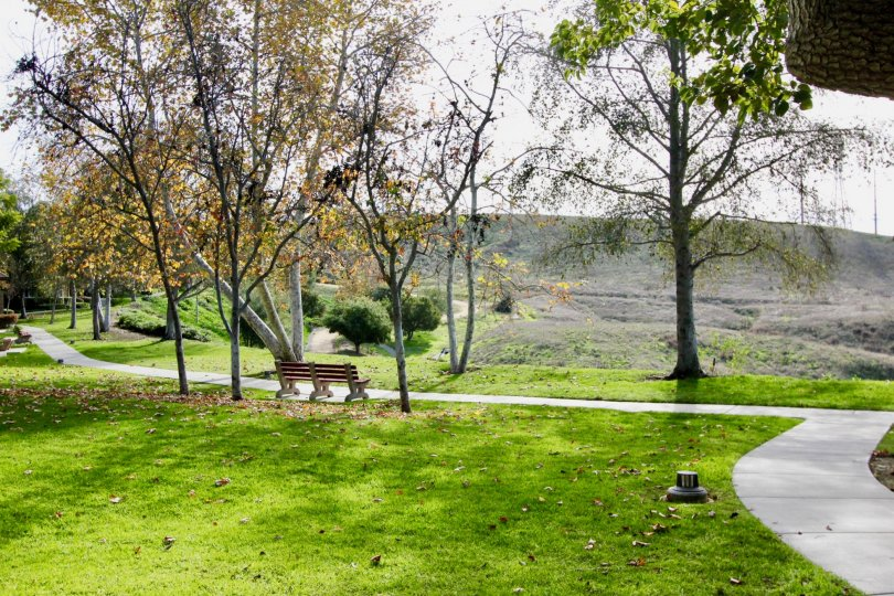 Nice park with sitting and green lawn with trees of Chambray in Ladera Ranch