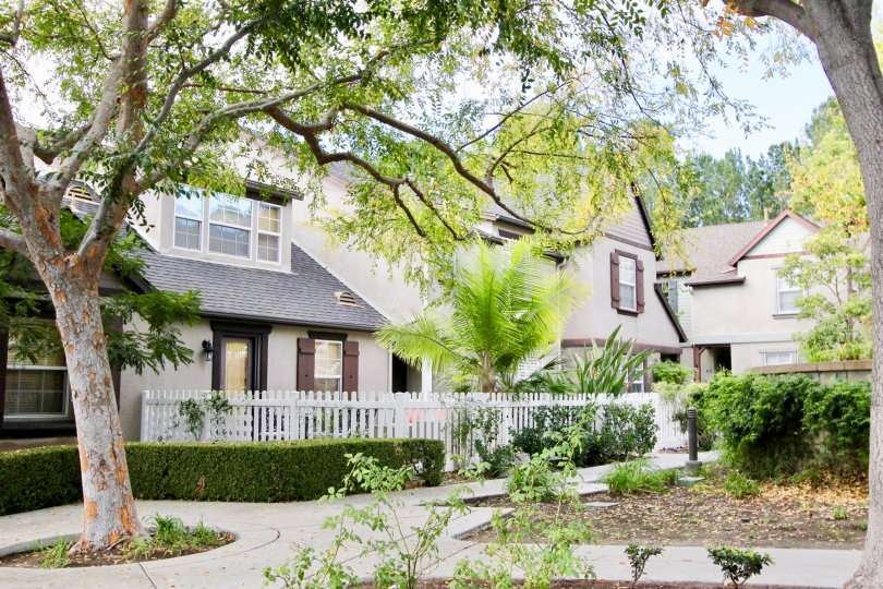 Gorgeous view of residences in Three Vines in Ladera Ranch, California. Residences are surrounded with luscious foliage from trees and bushes along pathways to the homes.