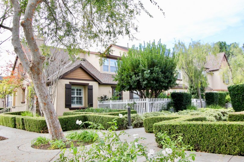 THE THREE VINES IS VERY BEAUTIFUL FOR SITE SEEING IN LADERA RANCH