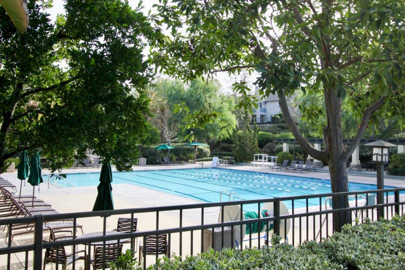 Pools and trees at the Trails community in Ladera Ranch, CA
