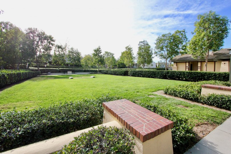 Warm, Sunny Garden in the Trails community of Ladera Ranch California