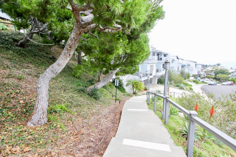 A beautiful foot path near the some buildings in the Aliso Laguna with some trees also.