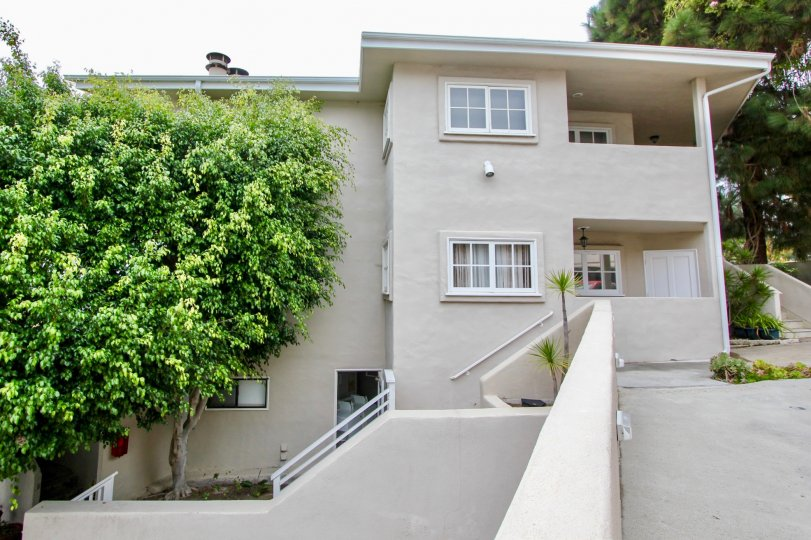 Two story Building with windows and a tree in the Creekside Community in Laguna Beach, CA.