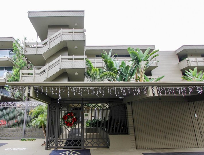THE APARTMENTS IN THE LAGUNA LIDO WITH THE UPSTAIRS, BANANA TREE, FLOWER PLANTS