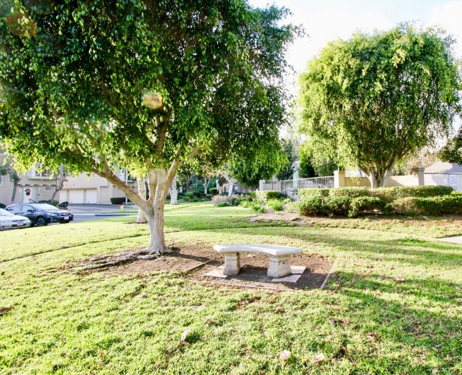 Beautiful green park with trees and carparking in Bridgeport Terrace of Laguna Niguel