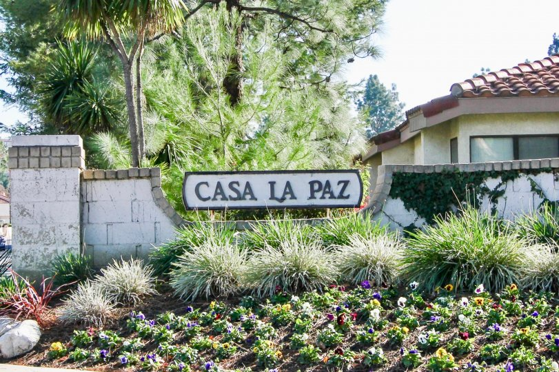 Casa La Paz homes are located in the coastal community of Laguna Niguel. Below are the homes for sale in Casa La Paz. Our Laguna Niguel Real Estate agents can guide you through the homes located in the Casa La Paz community of Laguna Niguel whether you ar