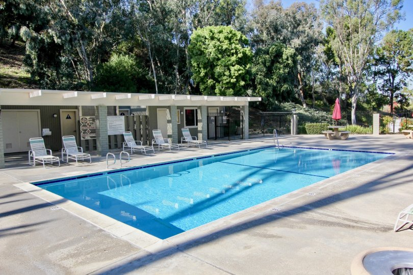 Beautiful Swimming Pool with trees and sitting in Foothill Townhomes of Laguna Niguel