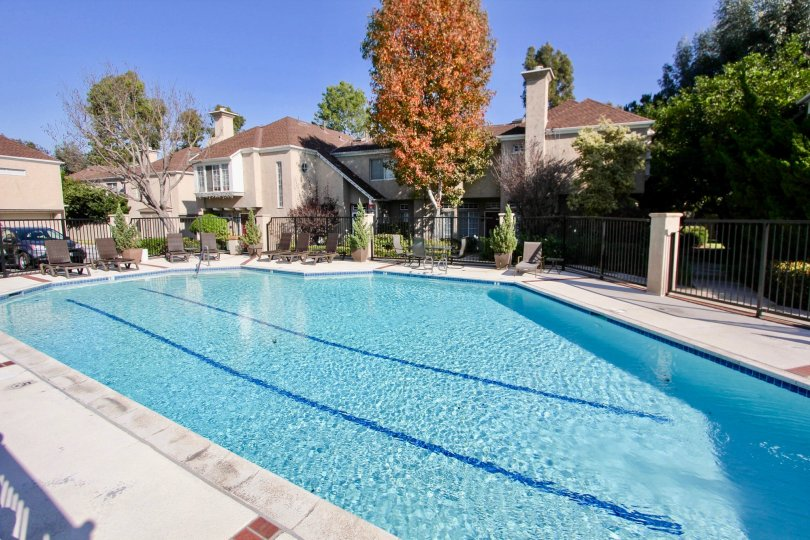 the hampton village is a amazing swimming pool of the laguna niguel city in california
